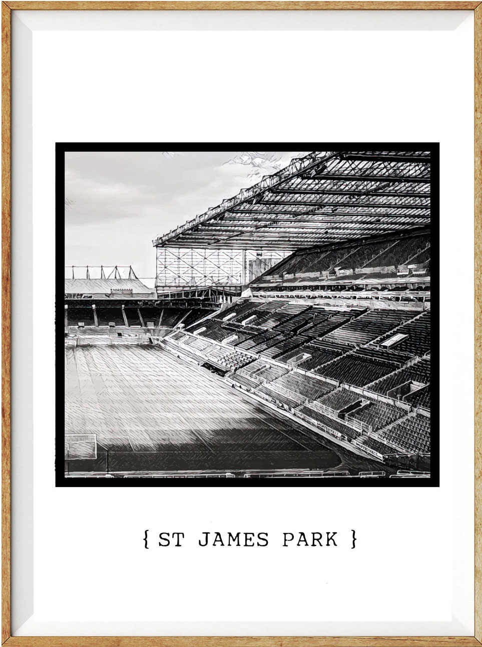 Newcastle St James Park