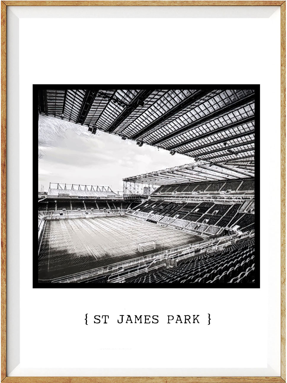 Newcastle St James Park1